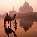 Taj Mahal At Dawn by Michele Burgess