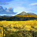 Taos Mountain by Brooke Lyman