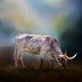 Texas Longhorn Steer by David and Carol Kelly
