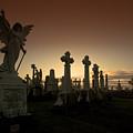 The Graveyard by Angel Ciesniarska