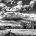 The Summers Day Farm by David Pyatt