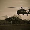 Us Army Blackhawks by Brenton Woodruff