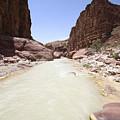 Wadi Zered Western Jordan by Gal Eitan