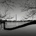 Washington Memorial by Brandon Bourdages
