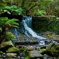 Waterfall In Deep Forest by U Schade