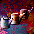 3 Watering Cans No.1 by Paul Gaj