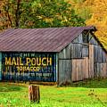 West Virginia Barn by Steve Harrington