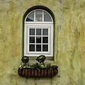 3 Windows by Wendy Carrington