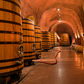 Wine Cellar  by Mountain Dreams