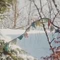 Winter by Sebastien Braillon