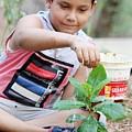 World Environment Day by ShashiBhushan Pandey