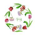 Wreath With Tulips by Natalia Piacheva