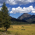 Yellowstone Vista by Marty Koch