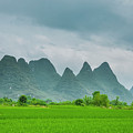 The Beautiful Karst Rural Scenery by Carl Ning