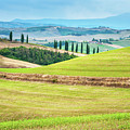 Tuscany Italy by Peter Horvath