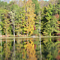 3007-fall Waterscape by Martha Abell