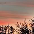 Horizon by Paul Stanner