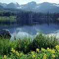 310238 Sprague Lake by Ed Cooper Photography