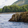 Alaska_00032 by Perry Faciana