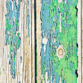 Weathered Wood by Tom Gowanlock
