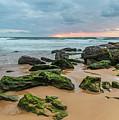 Dawn Seascape by Merrillie Redden