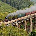 34067 Tangmere Crossing St Pinnock Viaduct. by Ashley Jackson