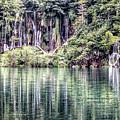 Plitvice Lakes National Park Croatia by Paul James Bannerman
