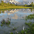Grand Teton National Park by Ray Mathis