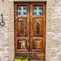 Italian Door  by Enrico Della Pietra