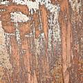 Rusty Metal by Tom Gowanlock