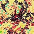 3d Color Dragon by Hans Gns