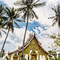Haw Pha Bang Temple In Luang Prabang In Laos by Didier Marti