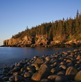 Acadia National Park by Brian Kamprath