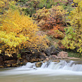 Autumn Foliage In Zion National Park by Pierre Leclerc Photography