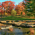 Autumn In Forest Park St Louis Missouri by Garry McMichael