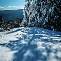Beautiful Nature And Scenery Around Snowshoe Ski Resort In Cass  by Alex Grichenko