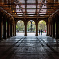 Bethesda Terrace by Robert J Caputo