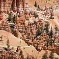 Bryce Canyon - Utah by Anthony Totah