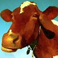 Bull by Nadezhda Zhuravleva