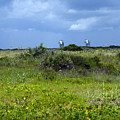 Cape Canaveral Florida by Allan  Hughes