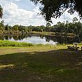 Cassadaga Spiritualist Camp In Florida by Allan  Hughes