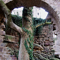 Castle Ruin Noerten-hardenberg by Valentina Vassilieva