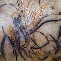 Cave Art: Mammoth by Granger