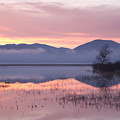 Cerknica Lake At Dawn by Ian Middleton