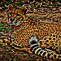 Cheeta by David Pine