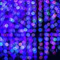 Christmas Lights by Jijo George