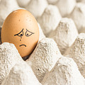 Eggs Have Feelings Too by Ernesto Santos