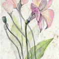 Flowers by Yana Sadykova