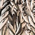 Fresh Fish by Tom Gowanlock