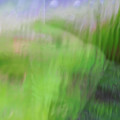 Green Landscape Abstract by Vladi Alon